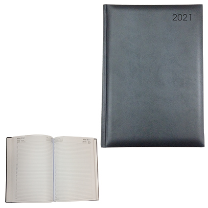 A4 PAGE-A-DAY DIARY ed-36 bk
